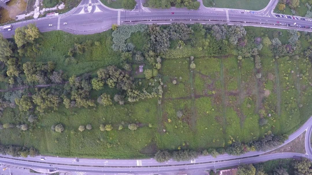 Il Parco Urbano di Cisanello (Pisa)